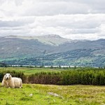 Loch Tay, near Killin, Perthshire