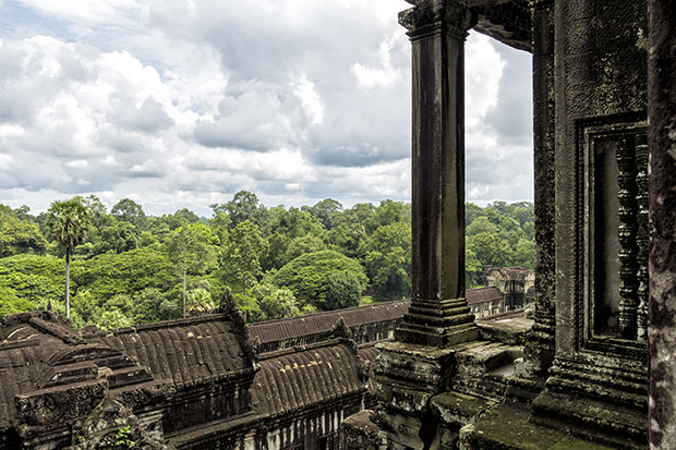 jungle surrounding Angkor Wat