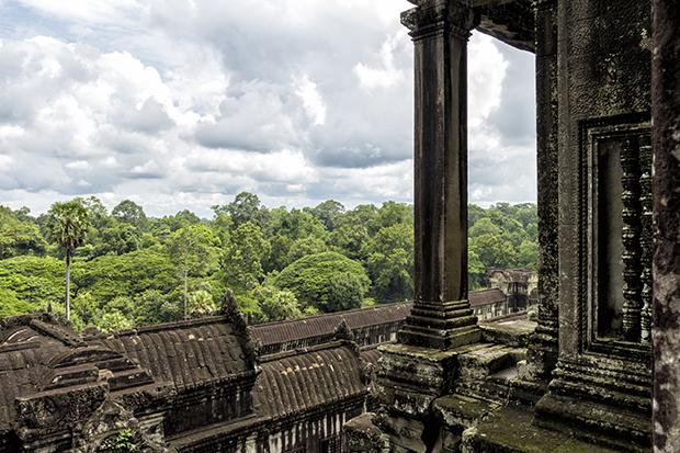 jungle surrounding Angkor Wat